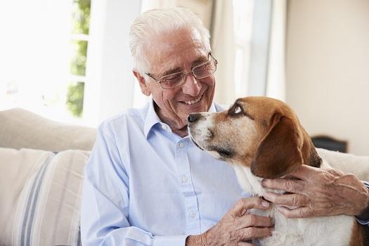 Benefits of Having a Pet in the Golden Years in Huntsville, AL