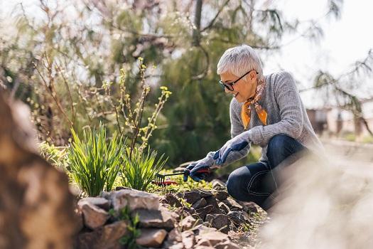 How Gardening Can Benefit Senior Health in Huntsville, AL